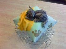 Apelmace la almohada del trullo de la pasta de azúcar con el primero del gato del azúcar Fotografía de archivo libre de regalías