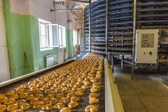 Apelmace la fábrica, línea automática equipo de la máquina, taller industrial de la confitería, industria alimentaria del transpo fotos de archivo libres de regalías