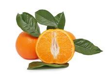 Apelsin royaltyfri foto