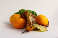 Apelsin Arkivfoton