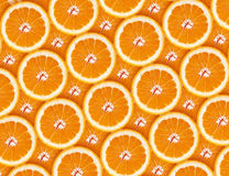 Apelsin bakgrundsillustrationorangen skivar vektorn Royaltyfri Foto
