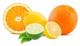Apelsin, citron och limefrukt med bladet royaltyfri fotografi
