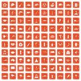 apelsin för grunge för 100 exotiska djursymboler fastställd Royaltyfri Foto