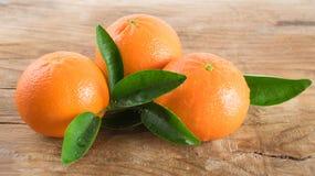 Apelsin för tre mandariner (tangerin) på träbakgrund arkivbild