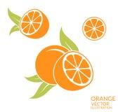 Apelsin Frukt på vitbakgrund Royaltyfri Bild
