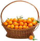 Apelsin i en korg Arkivfoton