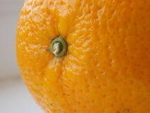 Apelsin. Macroshooting. Royaltyfri Fotografi