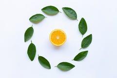 Apelsin med cirkelramen som göras av isolerade gröna sidor på vit royaltyfria foton