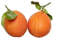 Apelsin med leafen Royaltyfri Foto