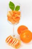 Apelsin med segment i exponeringsglas Royaltyfria Foton