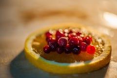 apelsin med tranbär Royaltyfri Fotografi