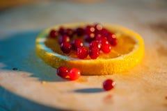 apelsin med tranbär Royaltyfri Foto