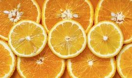 Apelsin- och citronsnitt in i circles3 arkivfoto