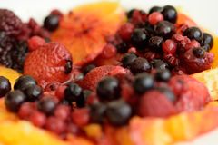 Apelsin och frukter av den smaskiga skogen - Arkivbilder