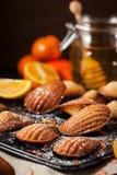 Apelsin- och honungmadeleineskakor arkivfoton
