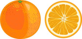 Apelsin och orange skiva på vit bakgrund Royaltyfri Fotografi