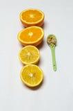 Apelsinen och citronen klipper i halva och skedar med sädesslag Royaltyfri Foto