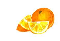 Apelsinen segmenterar Fotografering för Bildbyråer