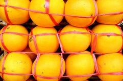 Apelsiner arkivbild