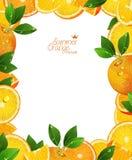 Apelsiner bär frukt med gröna sidor, skivor och fruktsaft Ram stock illustrationer