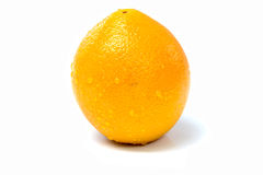 Apelsiner bär fruktt nytt Royaltyfria Bilder
