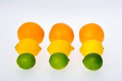 Nio citrusfrukter som arrangera i rak linje i tre, ror Royaltyfria Bilder