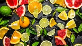 apelsiner för citrusfruktcitronlimefrukter Royaltyfri Foto