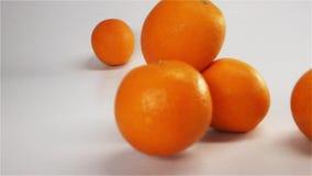 Apelsiner faller och studsar på våt yttersida för vit stock video