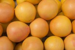 Apelsiner france paris Arkivfoto