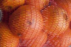 Apelsiner i en netto säck Fotografering för Bildbyråer