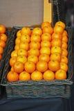Apelsiner i korg royaltyfri bild