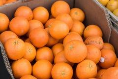 Apelsiner i pappers- ask Arkivfoton