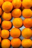 Apelsiner i rader Arkivfoton