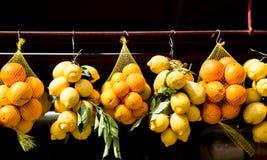 Apelsiner och citroner som hänger i marknad royaltyfri fotografi