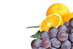 Apelsiner och druvor. Arkivbild