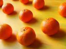 Apelsiner och mandarin Royaltyfria Bilder