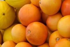 Apelsiner och melon Royaltyfria Bilder