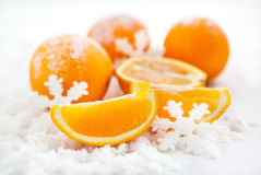 Apelsiner på snön royaltyfri foto