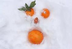 Apelsiner på snow Royaltyfri Foto