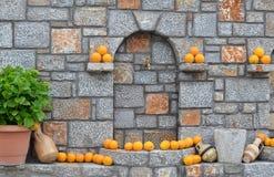 Apelsiner på väggen Royaltyfri Bild