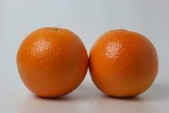 Apelsiner på vitbakgrund arkivfoto