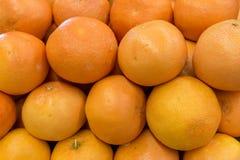 Apelsiner som är ordnade på lagerhylla Royaltyfri Foto