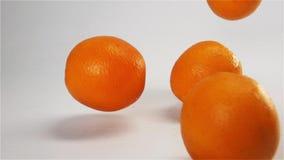 Apelsiner som faller och studsar på våt yttersida för vit arkivfilmer