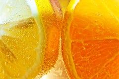 Apelsinskivor i detalj royaltyfri foto