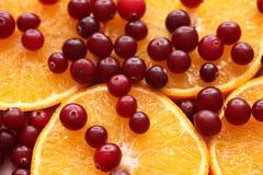 Apelsinskivor och röda tranbär arkivbilder