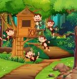 Apen die bij treehouse spelen stock illustratie