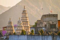 Apen die op de muur in de stad van Pushkar zitten Stock Fotografie