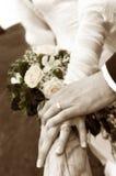 Apenas casado Imagem de Stock Royalty Free