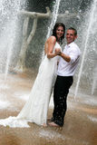 Apenas casado Imagens de Stock Royalty Free
