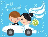 Apenas casado Imagem de Stock